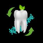 2016 - Elsodent - az első BisGMA, BPA, TEGDMA és HEMA mentes fogászati anyagcsalád